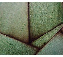 Beautiful Unique maple green wood veneer design Photographic Print