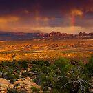 Desert Serenade by John  De Bord Photography