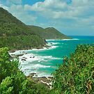 Ocean Road View by Penny Smith