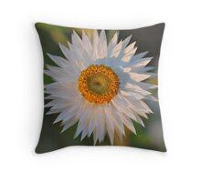 White Paper Daisy Throw Pillow