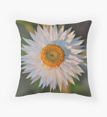 White Paper Daisy Throw Pillow