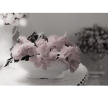 A Soft Serving Of Begonias Photographic Print