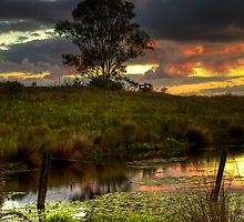 Sunset at Somerset by Steve Bass