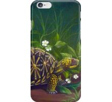 Florida Box Turtle, Strawberries and Blooms iPhone Case/Skin