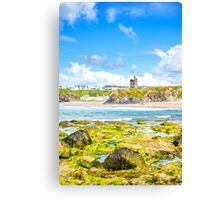 seaweed covered rocks with castle Canvas Print