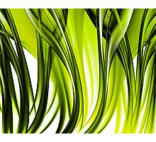 Abstract green grass Photographic Print