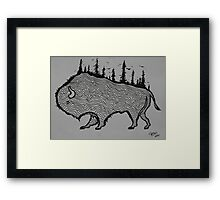 Explore Buffalo Framed Print