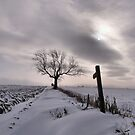 A Winter's Tale by Sarah Couzens