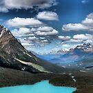 Peyto Lake  by Vickie Emms