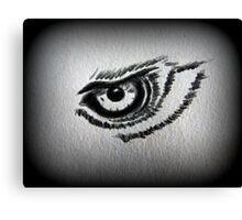 Eagle eye pencil drawing Canvas Print
