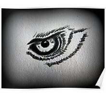 Eagle eye pencil drawing Poster