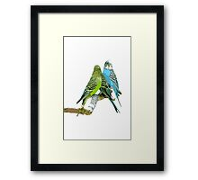 Tropical Birds Framed Print