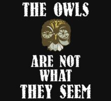 The Owls Are Not What They Seem by paulandgoats