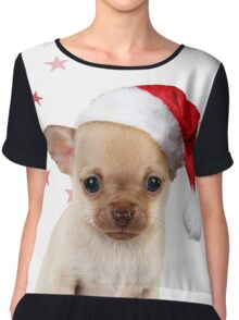 Cute Chihuahua dog in ladle Chiffon Top