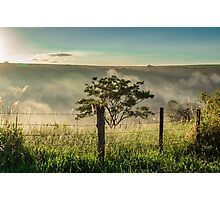 sunrise with tree Photographic Print