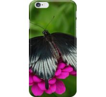 Brooding Black Beauty iPhone Case/Skin