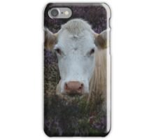Cow in the Heather iPhone Case/Skin