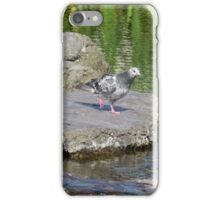 Stepping Stones and Winging It iPhone Case/Skin
