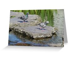 Stepping Stones and Winging It Greeting Card