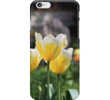 Bright tulips iPhone Case/Skin