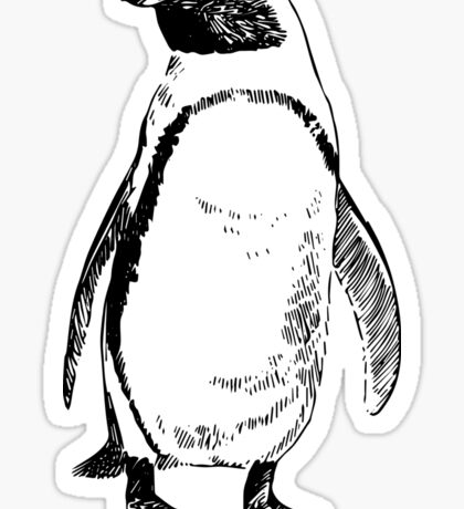Cute Black And White Pinguin Etching Sticker