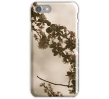 Faded Blooms iPhone Case/Skin
