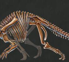 Triceratops Horridus Skeletal Study (No Labels) Sticker