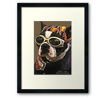 Cool Dude! Framed Print