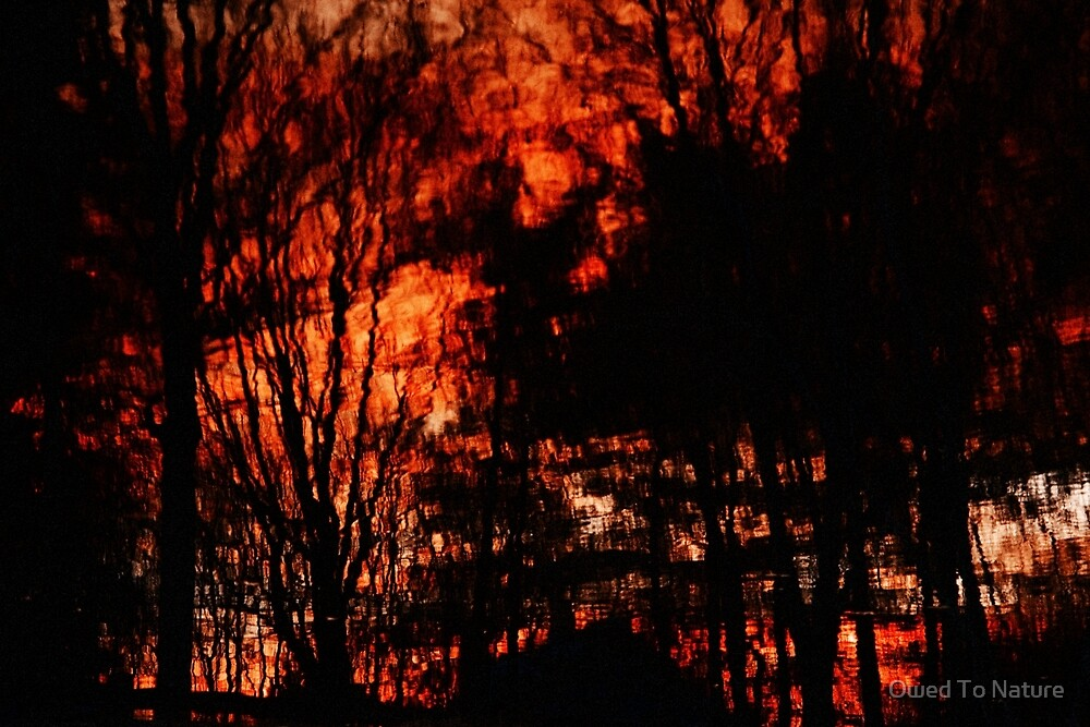 Fiery world turned upside-down  by Owed To Nature