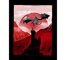Guardian of the tower Photographic Print