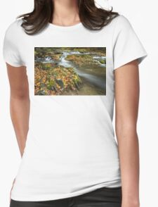 Autumn Leaves in the River Womens Fitted T-Shirt