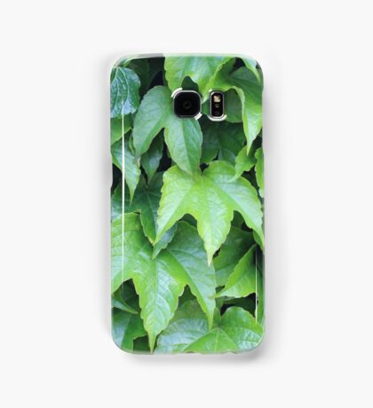 Boston Ivy Samsung Galaxy Case/Skin