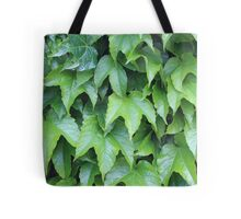 Boston Ivy Tote Bag
