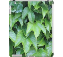 Boston Ivy iPad Case/Skin