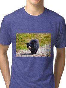 A Bear Walk Tri-blend T-Shirt