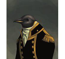 Captain Penguin  Photographic Print