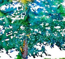 Cypress Tree by Daniel Adams Sticker