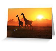 Giraffe - Sunset Gold and Harmony - African Wildlife Greeting Card