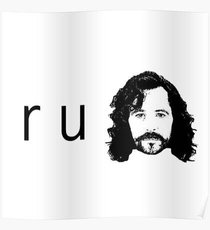 R U Sirius Poster