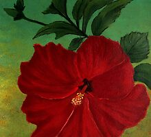 Red hibiscus by maggie326