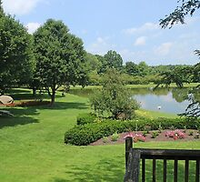 Whitehouse Farm Pond by Jack Ryan