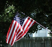 Old Glory by WeeZie