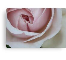 Folding Petals Canvas Print
