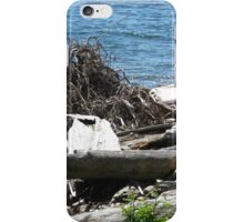 Driftwood at Lincoln Park iPhone Case/Skin