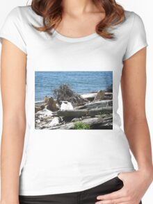 Driftwood at Lincoln Park Women's Fitted Scoop T-Shirt