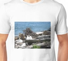 Driftwood at Lincoln Park Unisex T-Shirt