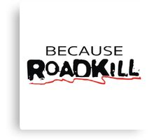Because Roadkill Canvas Print
