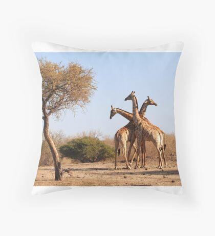 African Giraffe tri- neck-ta Throw Pillow