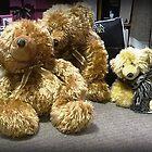 *Three Bears at the Creswick Knitting Mills, Vic. Australia* by EdsMum