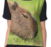 Grazing Capybara Chiffon Top